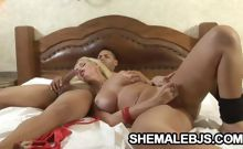 Curvy shemale sucking her partner's dick