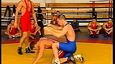 Three wrestlers pin each other to the mat for hot gay action