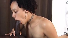 Lovely moist babe Shyla simply devours giant chocolate cum-stick
